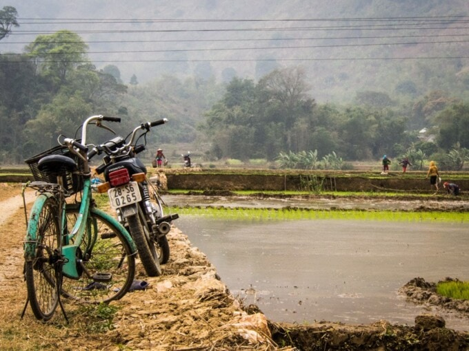 bicycles in the rice fields near mai chau