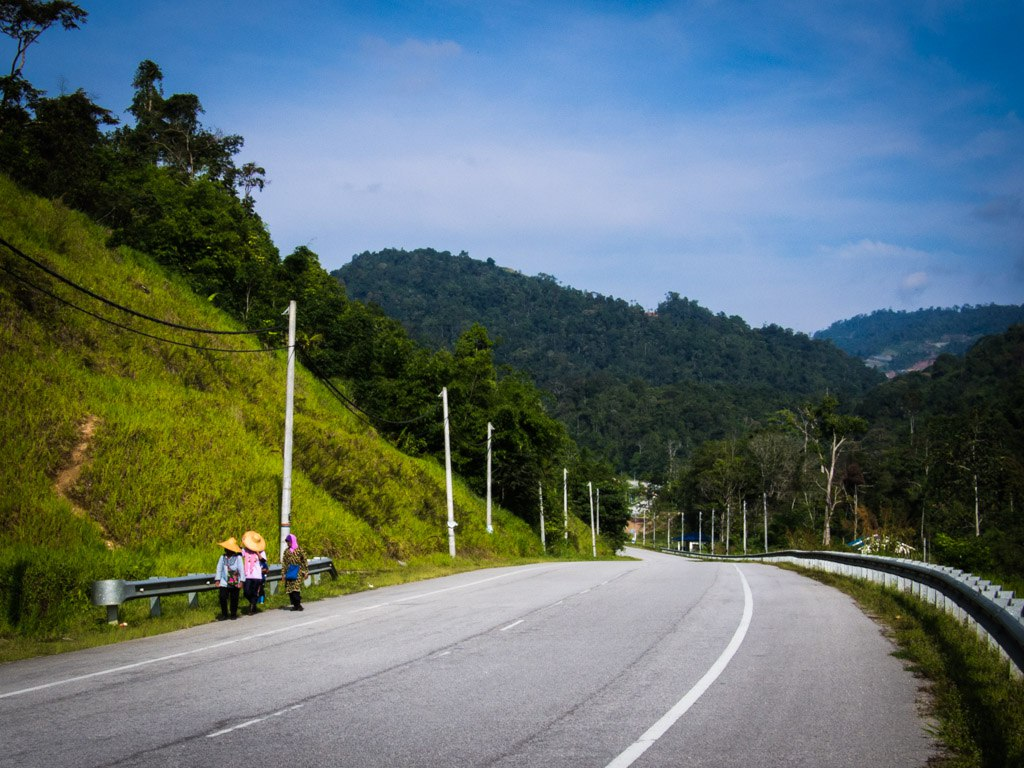 Slow and steady descent from Cameron Highlands.