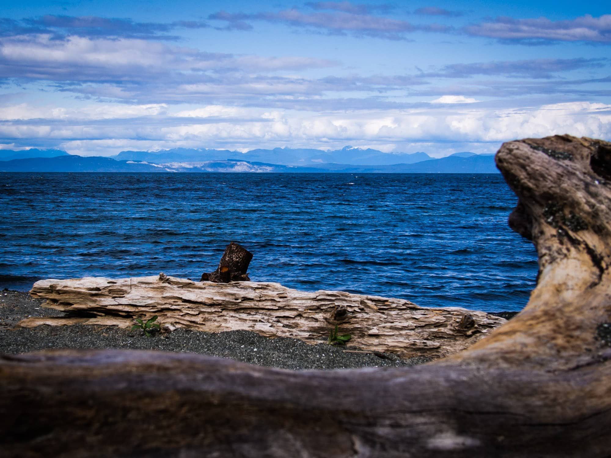 view of the ocean and mountains from denman island