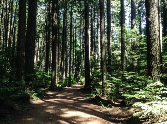 Vancouver bike routes, Pacific Spirit Park