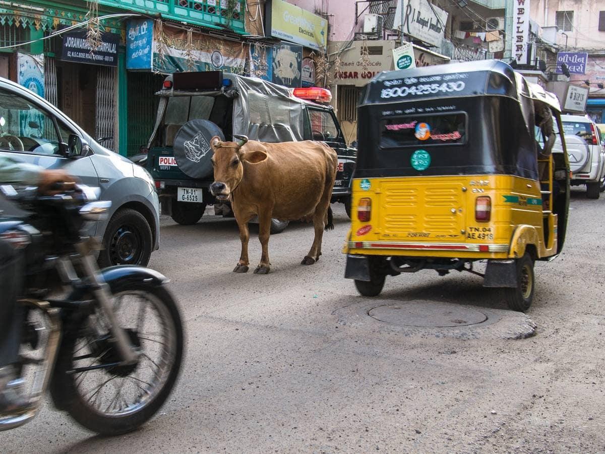 autorickshaws in Chennai