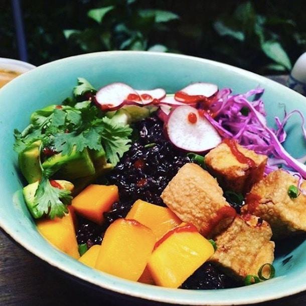 bowl of fresh vegan salad