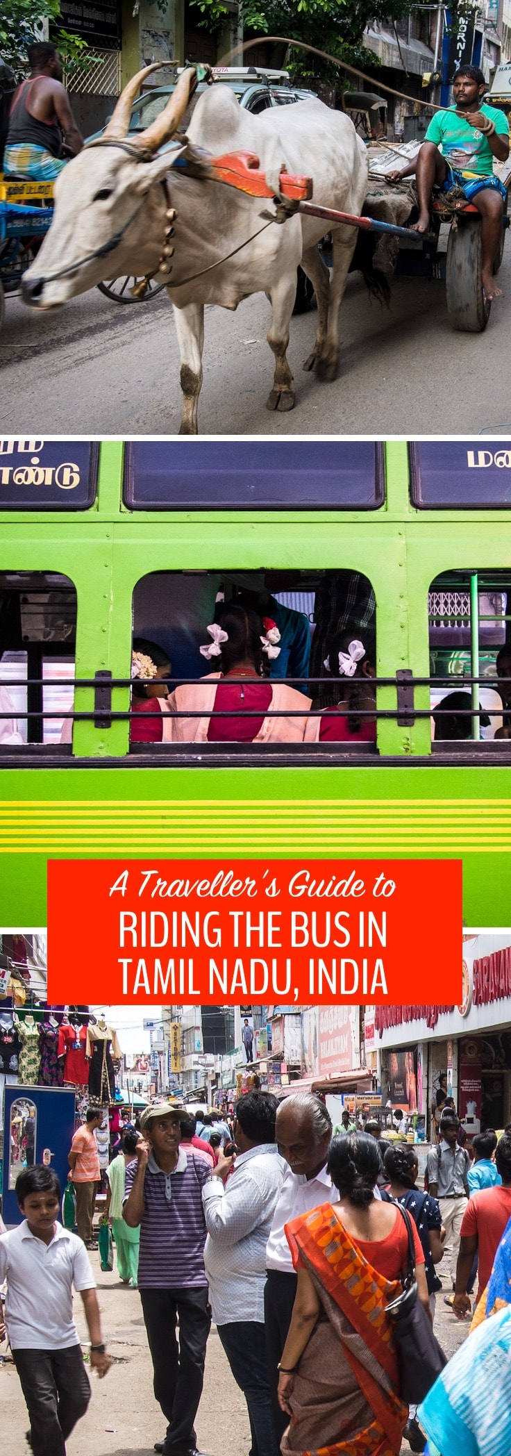 Before we took our first bus in Tamil Nadu, it seemed that navigating the confusing and apparently disorganized bus system would be an impossibility. We're saying nothing for the comfort, but if you want a true cultural experience, riding the bus in Tamil Nadu is the place to find it. Here's how to do it: