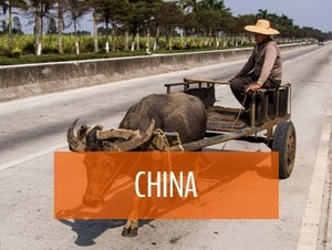 china travel my five acres