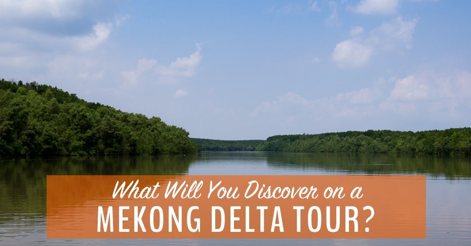 What Will You Discover on a Mekong Delta Tour in Vietnam?