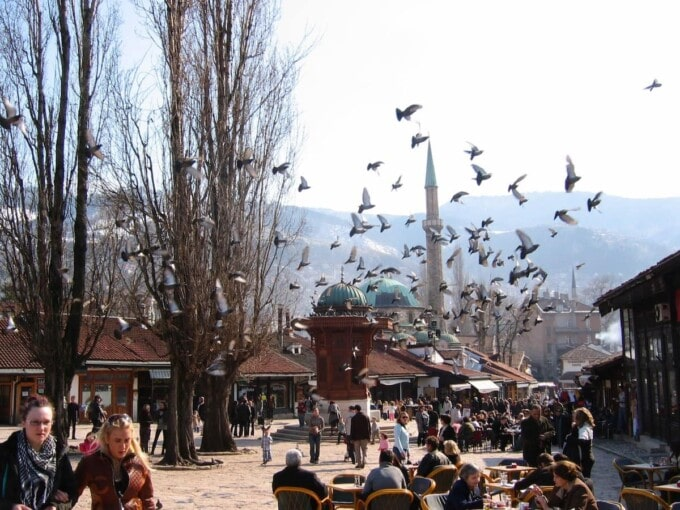 birds take flight in sarajevo bosnia & Herzegovina