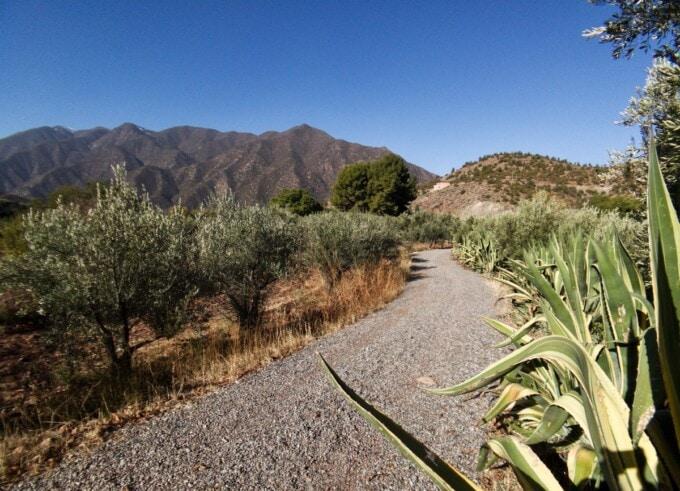 grounds at domaine de la roseraie morocco