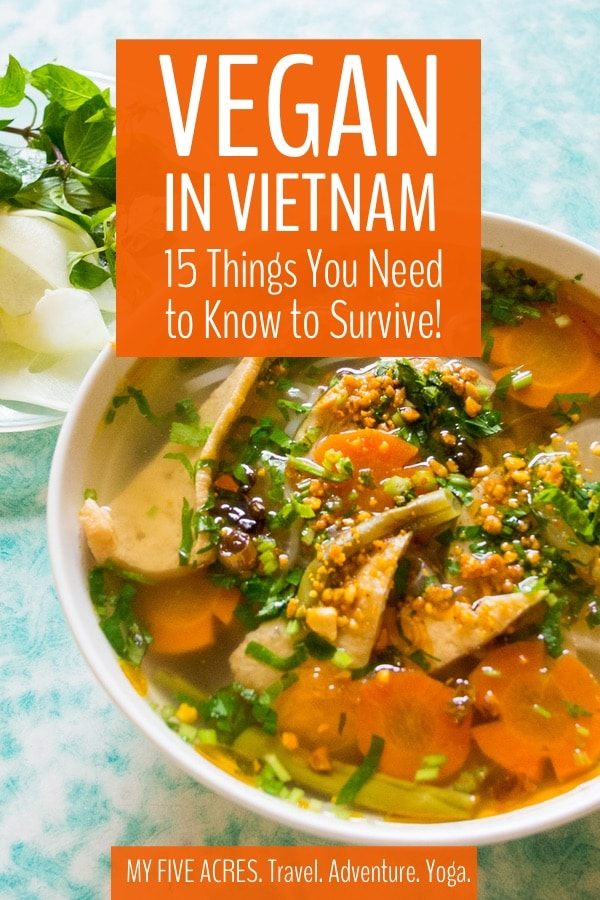 Great news for vegan travellers – it is possible to stay vegan in Vietnam. The bad news is that finding vegan food in Vietnam is not always easy. This guide will help you find delicious food that you can be sure is meat-free and animal-friendly. #vegan #travel #vietnam