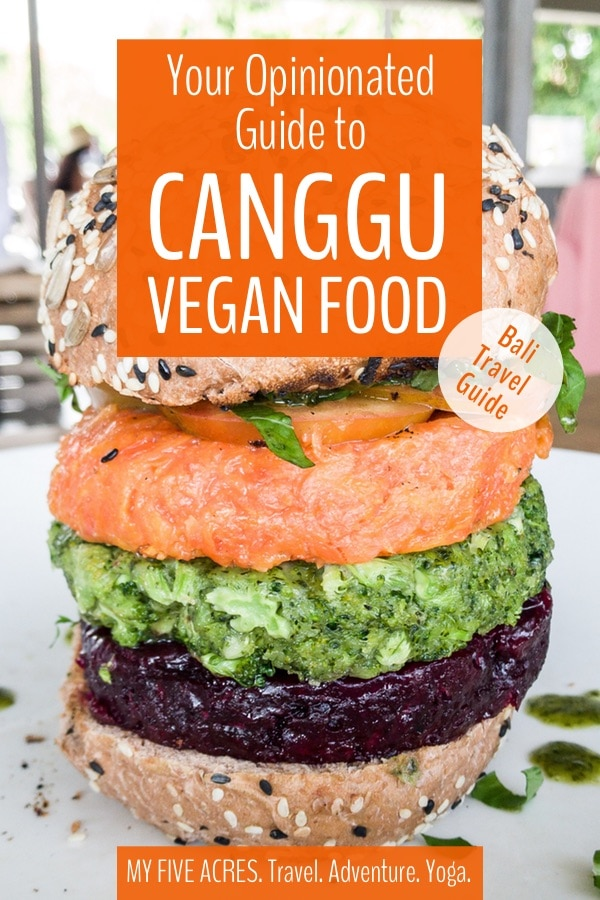 Are you looking for the best Canggu vegan food? This former fishing village on the southern shores of Bali has plenty to offer for animal friendly eaters! Read on for our opinionated guide to the best Canggu cafes and restaurants for vegans.