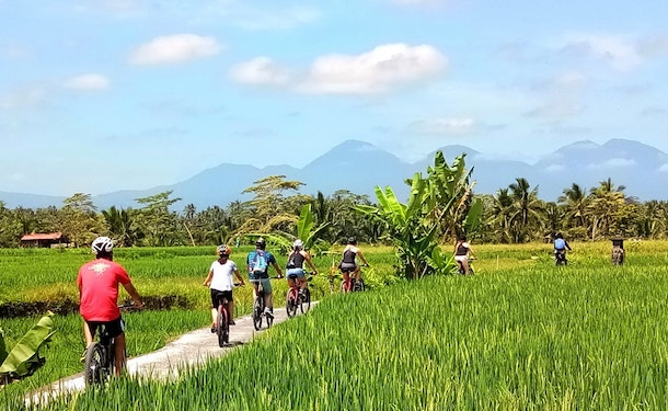 ebike tour tegalalang