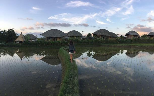 tegalalang hotels