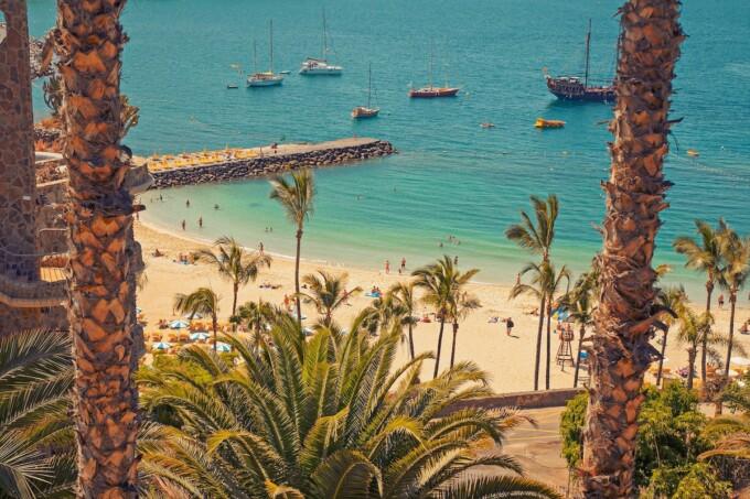 beach palm trees boats in gran canaria spain
