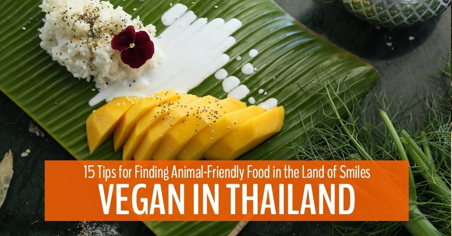 vegan in thailand