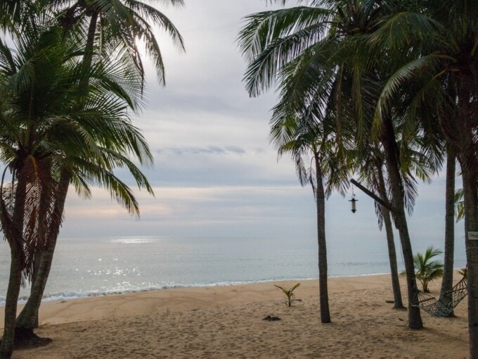 2 weeks thailand itinerary beach and palm trees