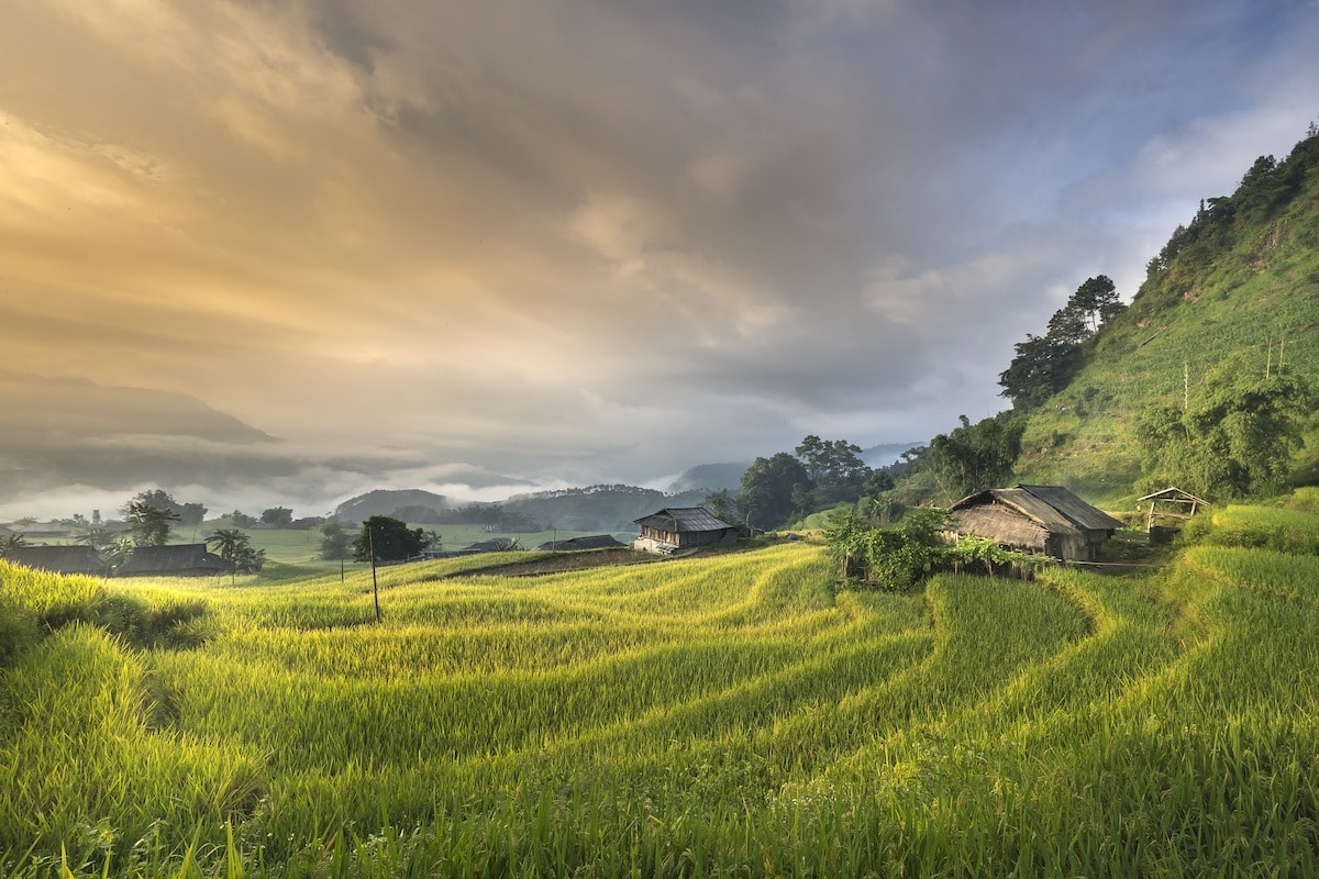 green tourist landscape vietnam