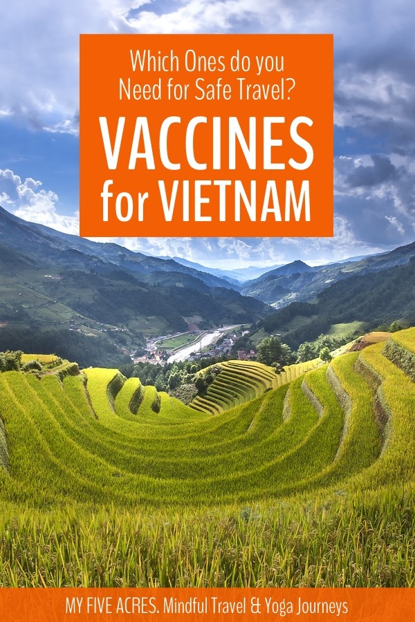 Find out exactly which travel vaccines you'll need for Vietnam. This guide explains the injections you need and why you need them. Click to find out. #vietnam #travel #vaccines #myfiveacres #mindfultravel #ecotravel
