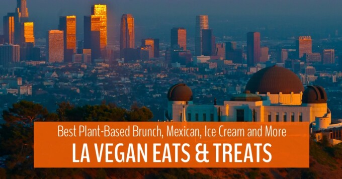 main blog image la vegan food