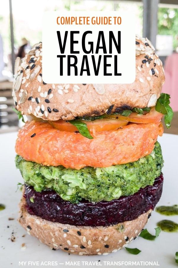 pinterest image for vegan travel