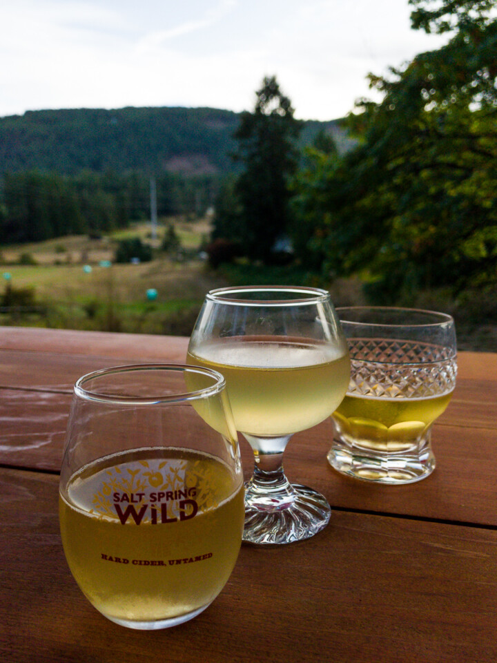 three glasses of cider at a gulf islands cidery overlooking a pastoral view